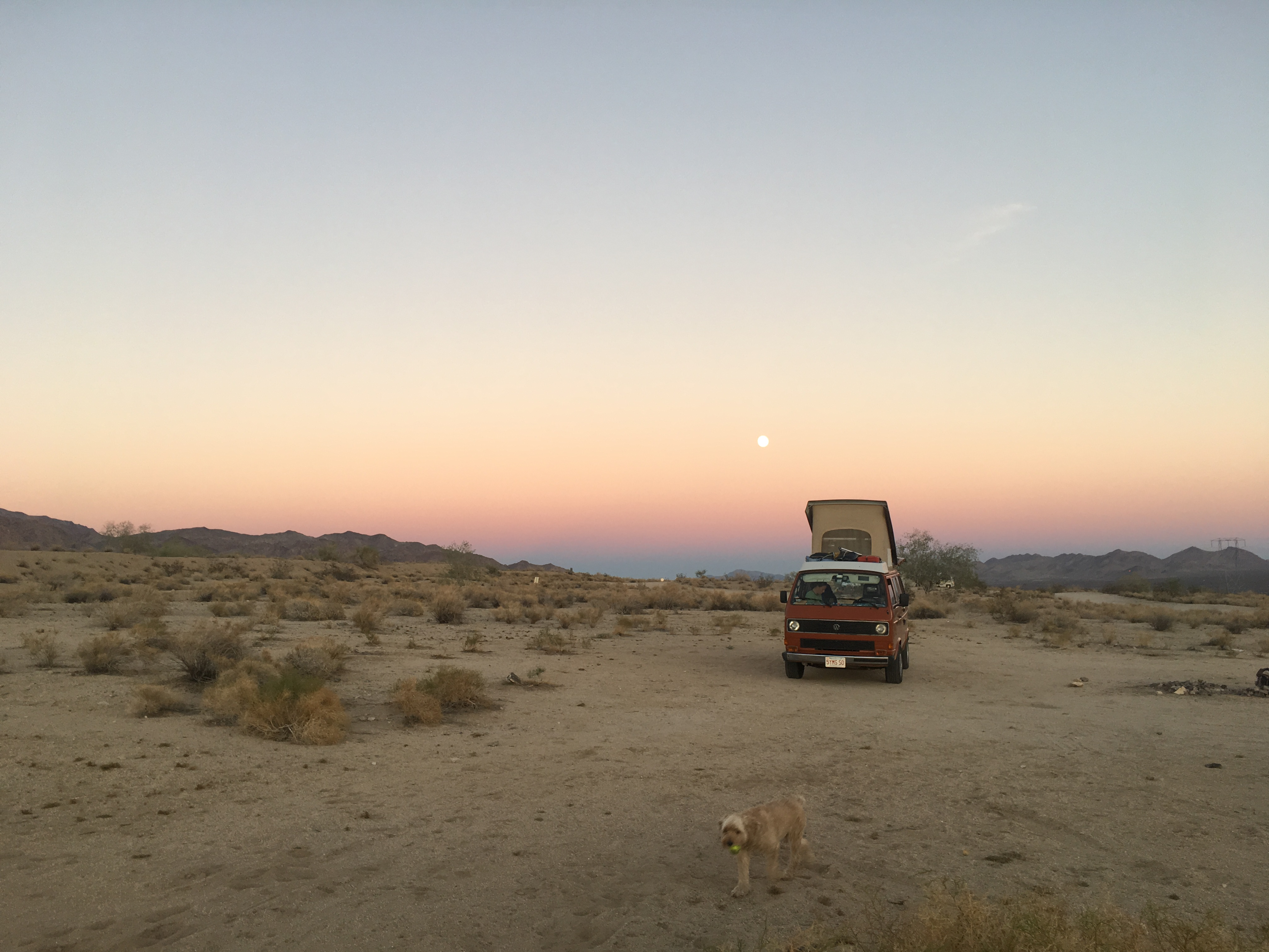 Rugby and the Sunset Outside Joshua Tree